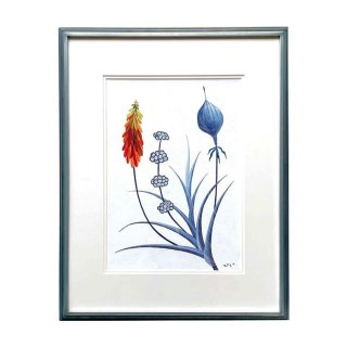 ある夏の日の花
