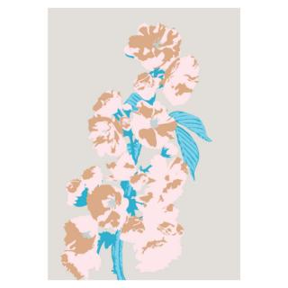 鑑賞-flower series_1-