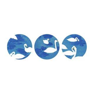 スワン/Swans (M)