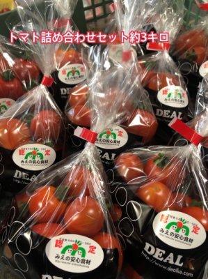 デアルケトマトお任せセット約3kg  ご予約受付中  2021年1月中下旬頃のお届けご予約になります。