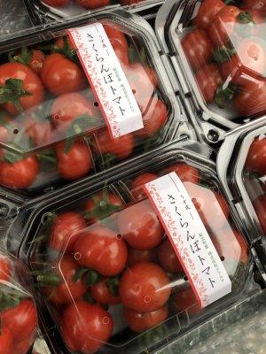 さくらんぼトマト 1月お届け予約です