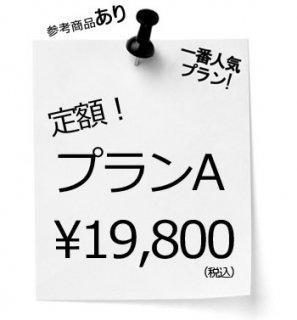 サンプル作成定額プランA