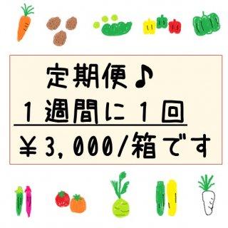 限定 ★毎週発送★定期便・旬彩野菜バスケット