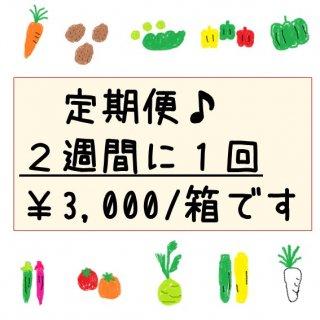 限定 ★隔週発送★定期便・旬彩野菜バスケット