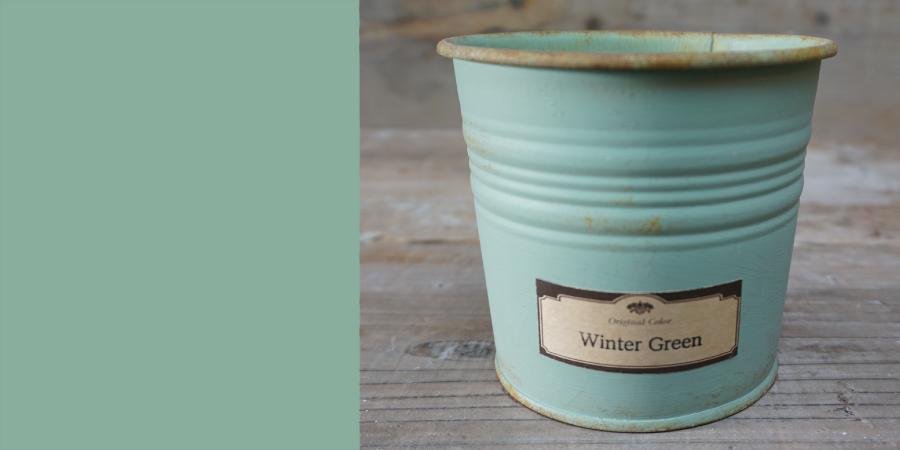 Winter Green/ウィンターグリーン