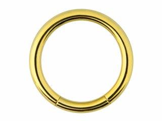 【GSR】Zircon Gold Smooth Segment Rings