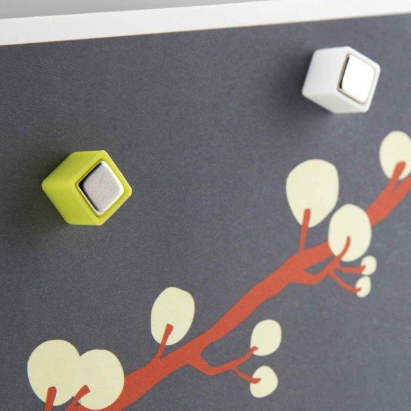 ネオジム 磁石 強力 マグネット カラー キューブ Mighites