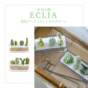 キシマ エクリア 消臭アーティフィシャルグリーン 多肉4種