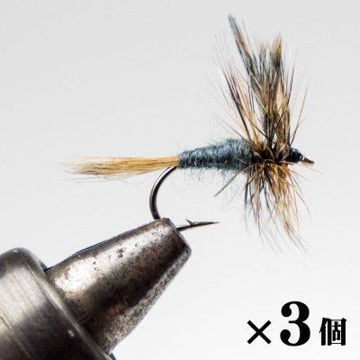 アダムス×3 (A-1)