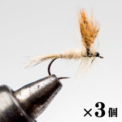 ライトケイヒル×3 (A-5)