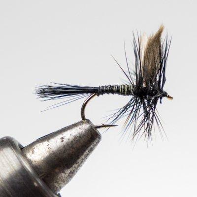 ブラックナットクイルボディー (A-4)