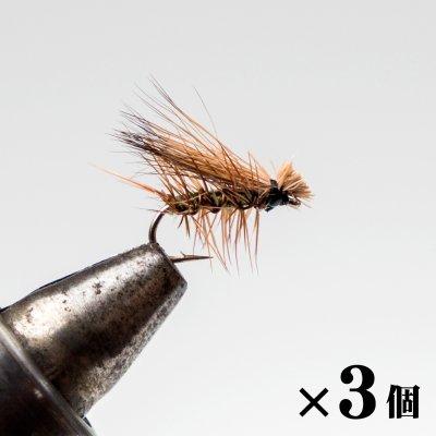 エルクヘアカディス タン×3 (F-1)
