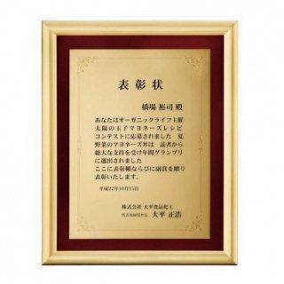 アルミ製額 JP-B66-01