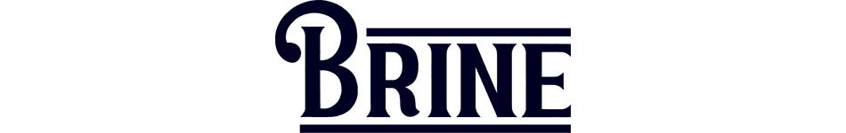 クリステンソンサーフボード キャプテンフィン キャッチサーフ BRINE