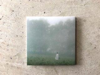 山の朝霧 / 森ゆに