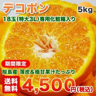 デコポン3L大玉5キロ満杯詰め  鹿児島桜島産