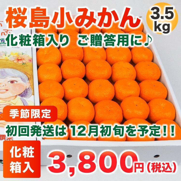 桜島小みかん 3.5Kg(化粧箱)