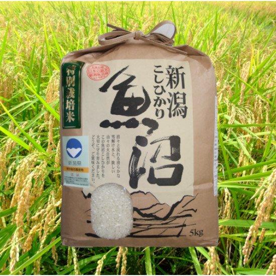 魚沼三昧「特別栽培米」5kg