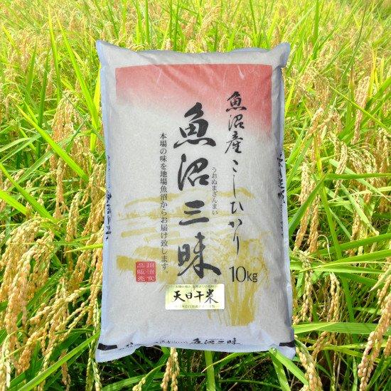 魚沼三昧「天日干米」10kg