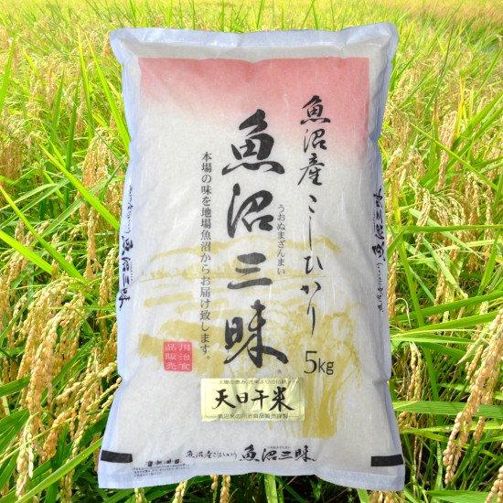魚沼三昧「天日干米」5kg