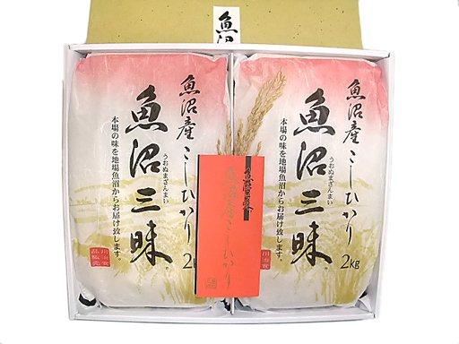 魚沼三昧(コシヒカリ)和紙包装2kg×2