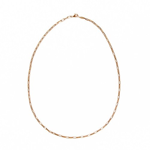 BG thick chain / necklace