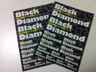Black Diamond オリジナルステッカー(2枚組)