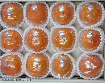 九度山の冷蔵富有柿:M 14個入り 画像
