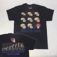 グレイトフルデッド Tシャツ EVOLUTION(XL) 新品 【メール便可】