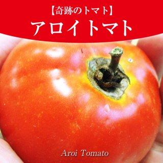 残りわずか!【奇跡のトマト】アロイトマトの種10粒〜一般的に手に入らない品種〜(送料無料)