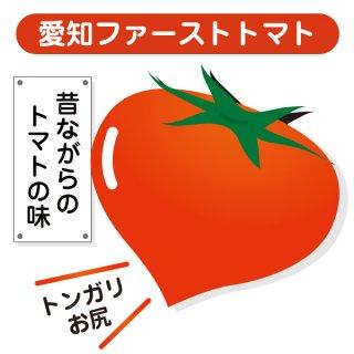 【とんがりトマト】愛知ファーストトマトの種10粒〜昔なつかしい味がするトマト〜 (送料無料)