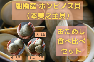 【送料無料】ホンビノス貝食べ比べセット 大3玉 中5玉 ミニ10玉(2〜3名分)【リニューアルセール中!】の商品画像