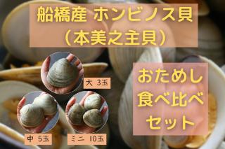【冷蔵・送料無料】ホンビノス貝食べ比べセット 大3玉 中5玉 ミニ10玉(2〜3名分)【サイトオープンセール中!】の商品画像