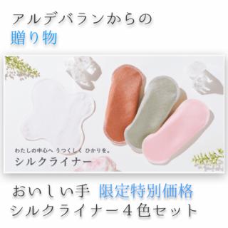 シルク レギュラーライナー 4色セット <br>☆おいしい手限定10%OFF☆