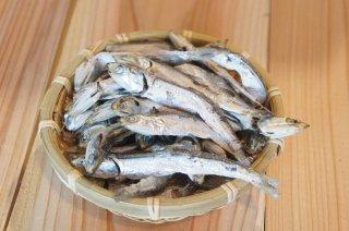 いりこ|煮干し|広島県産|500g