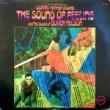 LEONARD FEATHER/OLIVER NELSON-THE SOUND OF FEELING[verve/us]'66/9trks.LP *edge wear/split(vg-/ex-)