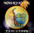 ART APGAR - WALKIN' ON FENCETOPS[sonshine/us]'78/10trks.LP w/Insert*edge wear/wos(vg++/ex+)