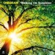 ONEGRAM - Walking On Sunshine [Flower Records] 7インチ限定盤