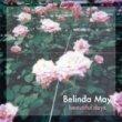 Belinda May(ベリンダ・メイ) - Beautiful Days[fastcut records]3trks.7インチ+DLコード 1,500円+税