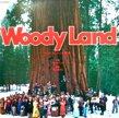 WOODY LAND ウッディ・クリントリックスの歌[松下電器産業]'7x/2trks.7 Inch 非売品