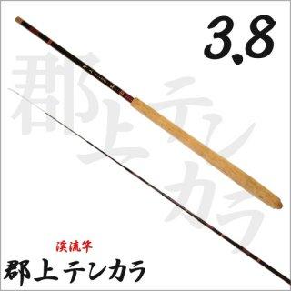 郡上 テンカラ 3.8 (渓流竿)