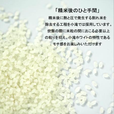 [送料無料] 希少米コタキホワイト白米 2kg袋の3個セット