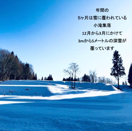 希少米!コタキホワイト干支ラベル2本セット(数量限定出荷)