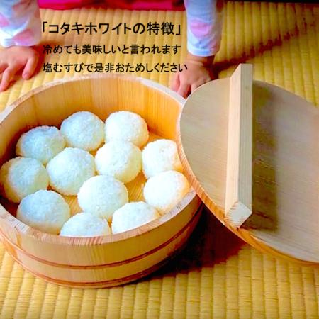 希少米コタキホワイト白米 2kg袋の5個セット