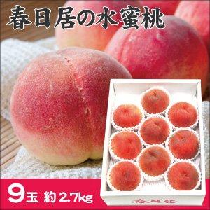 【お中元・夏の贈り物に】春日居の桃 9玉 (2.7kg) 【お届け期間 7月上旬〜8月上旬】