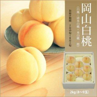 【お中元・夏の贈り物に】岡山白桃 2.0kg(8〜9玉)【お届け期間 7月中旬〜8月中旬】