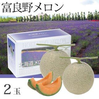 北海道 富良野メロン 赤肉 2玉