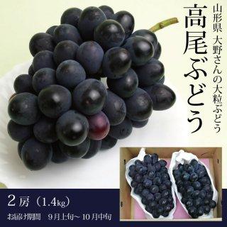 【生産者限定】大野さんの大粒ぶどう「高尾」1.4kg