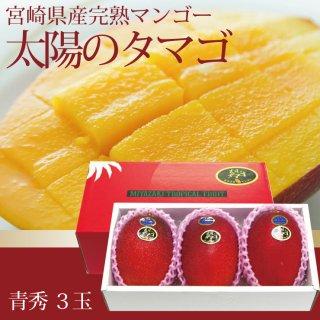 宮崎県産完熟マンゴー「太陽のタマゴ」3玉入