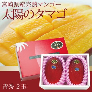 宮崎県産完熟マンゴー「太陽のタマゴ」2玉入